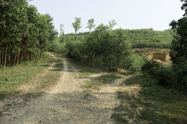 FSB Bastogne Vietnam, Entrance road
